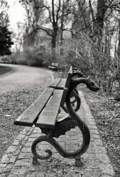What do you think could happen if we sit on the Dragon Bench in Bruges, Belgium? It depends on your wish. Here Be Dragons, La Forge, Dragon Art, Mythical Creatures, Blacksmithing, Metal Art, Street Art, Fantasy, Black And White