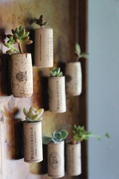 10 Modern Cork Craft DIY Ideas (Non-Cheesy!) | Apartment Therapy