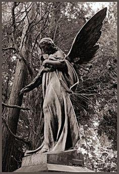 Google-Ergebnis für http://view.stern.de/de/original/942621/friedhof-Engel-statue-Trauer-Denkmal-Frieden-portrait.jpg