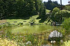 Jardin avec étang à l'hôtel Elisabeth à Kirchberg dans le Tyrol