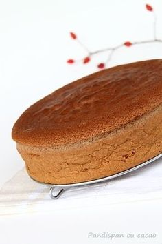 Very Helpful Cacao Benefit Techniques For cacao chocolate maple syrup No Bake Cookies, Cake Cookies, Cacao Benefits, Cacao Chocolate, Chocolate Cakes, Sponge Cake, Food Cakes, Cake Recipes, Food And Drink
