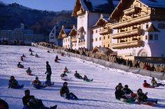 #Muju ski resort, South Korea Sledding at Muju ski resort in Togyu-san National Park.  ⭐️⭐️www.SkincareInKorea.info