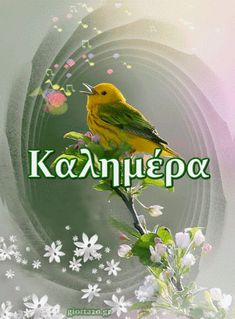Καλημέρα Quotes Arabic, Greek Quotes, Good Morning Greetings, Good Morning Quotes, Greek Language, Good Afternoon, Yellow Flowers, Diy And Crafts, Decoupage
