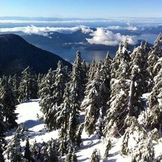 White Christmas for meeeee at Cypress Mountain, Canada
