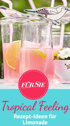 Tropical Feeling: Kreative Limonade selber machen!