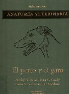 Animal Friend: ATLAS A COLOR ANATOMIA VETERINARIA DEL PERRO Y GAT...