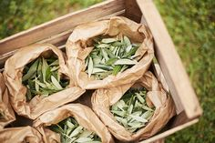 A nice aternative to confetti for the wedding ceremony, olive leaves to throw to bride & groom. Wedding Flower Decorations, Wedding Flowers, Wedding Looks, Dream Wedding, Rustic Feel, Country Chic, Becca, Tuscany, Bride Groom