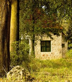 house in the forest- near Athens, Greece