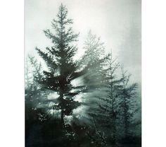 Pine Trees Morning Fog Daybreak Watercolor by MarshNelsonFineArt, $25.00