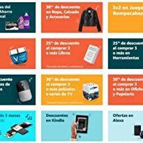 140 Ideas De Las Palmas Palmas Las Palmas Pinypon Casa