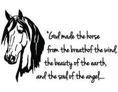 Not a truer statement...love my horses!!