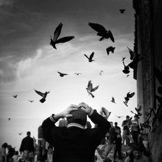 Expressive Pictures By Mustafa Dedeoglu