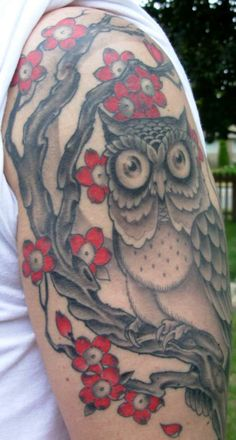 Owl with cherry blossom