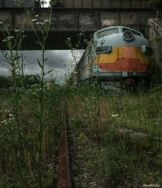 Beautiful Abandoned train in South Jersey, Winslow Railroad Junction  Flickr