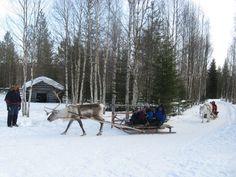 Short trip in winter paradise