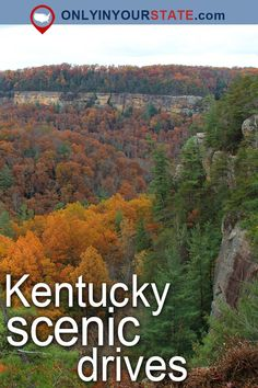 Travel | Kentucky | Attractions | USA | Scenic Drives | Country Road | Things To Do | Nature | Adventure | Outdoor | Bluegrass State | Bucket List | Scenic Byway | Relaxation | Hidden Gems | Waterfront | Trails | Mountains | Waterfalls | Natural Wonders | Gorge | Kentucky Scenic Drives