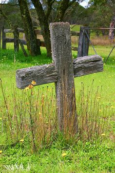 old cemetery crosses