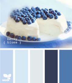 design seeds: berry blues