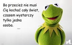 Discover and share Kermit The Frog Funny Quotes. Explore our collection of motivational and famous quotes by authors you know and love. Kermit The Frog Quotes, Meeting Someone New Quotes, Old Friend Quotes, Driving Quotes, The Muppet Show, Love Dating, Jim Henson, Disney Quotes, Friendship Quotes