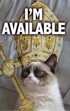 Grumpy Cat for Pope on http://www.drlima.net