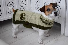 Olive Green knitted Coat dog medium and large, Wooled blanket Sweater for dogs, Pet Pullover medium, Dogs Clothes, Dog Costume Handmade This sweater model is available in all sizes. If the size of your dog is different then send me a measurement of your pet and preferably his photo