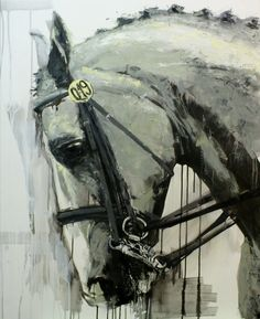 Lara Ješe, 0.75 kW, 2013. Portrait of a particular dressage horse with a bridle and number