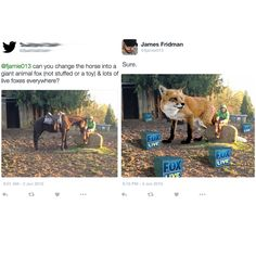 """23 Troll-y Photoshop Gems From The Infamous James Fridman - Funny memes that """"GET IT"""" and want you to too. Get the latest funniest memes and keep up what is going on in the meme-o-sphere. Funny Photoshop Requests, Funny Photoshop Fails, Photoshop Help, Photoshop Actions, Creative Photoshop, Photomontage, James Fridman, Giant Animals, Great Memes"""