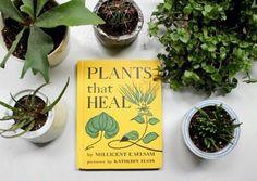 plants = heaven < modern witch + Eileen