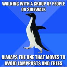 i find it kind of disturbing how well i relate to the socially awkward penguin.... gahh.