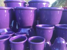 Purple Pots from Potsonline Australia. Huge range of brightly coloured pots available for your next project. #garden