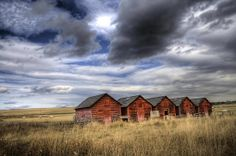 Five red barns.