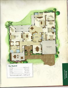 The Classical Collection Savoy Floor Plan in Solivita, Kissimmee FL ...