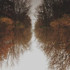 Incredible Scenes Reflected on Puddles