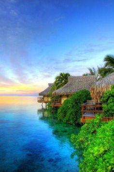 Bali #natuur #tropisch