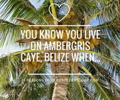 Moving to Belize over nine years ago was an amazing thing. I've had the chance to immerse myself in a new culture, new music, new languages (Spanish, Krio When You Know, Knowing You, Laying On The Beach, Ambergris Caye, Caribbean Culture, Belize Travel, Travel Organization, Mayan Ruins, Vacation
