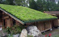 Пример зеленой крыши частного дома