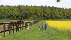 Countryside and Wine Tasting 1 Day Tour - Studniska Horse Centrum Visit Poland, 1 Day, Day Tours, Wine Tasting, Countryside, Horses, Activities, History, Life