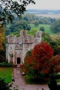 Dunster Castle, Somerset, UK- I have walked around this castle myself - it's awesome and takes your breath away!