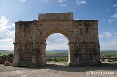 Arco de Triunfo de Caracalla en Volubilis