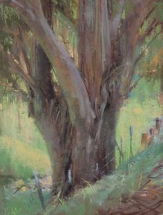 Old Euc - Bill Cone 2013 Eucalyptus Trees in paintings/art remind me of my youth driving through Camarillo Calif. along the old highway that passed through a grove or corridor of Eucalyptus.
