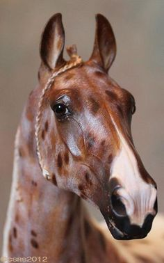 Wow how beautiful it is amazing what can be done with a model horse
