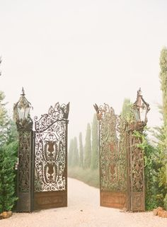 Iron Gates Opening on a Misty Manor | KT Merry Photography