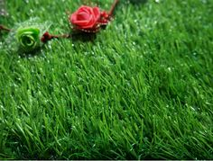 WF-BV7700 #LandscapeGrass #ArtificialGrass
