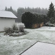Veselé Velikonoce! #jarojetu #zimajezpet #nofilter #nophotoshop #snow #chodsko