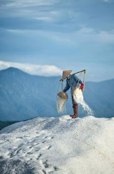 Salt in Viet Nam                                                       …