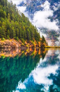 Mirror Lake at Jiuzhai Valley National Park   | nature | | reflections |  #nature  https://biopop.com/