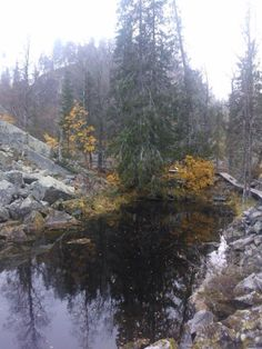Isokuru in Pyhä-Luosto National Park in October Photo Eero Fisk Finland October 2014, Geology, National Parks, Seasons, River, Mountains, Gold, Photography, Outdoor
