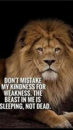 Leo Quotes, Wise Quotes, Quotable Quotes, Attitude Quotes, Great Quotes, Funny Quotes, Qoutes, Karma Quotes Truths, Super Quotes