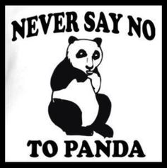 Funny Pics / Pictures / Panda / Funny Animals
