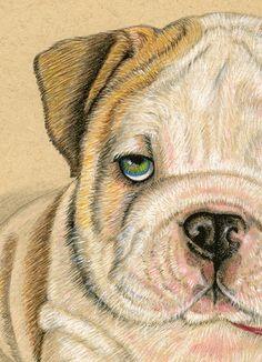 English Bulldog Puppy Art Print 8 x 10 inches-RevelleTaillon